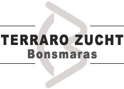 Terraro Zucht Bonsmaras
